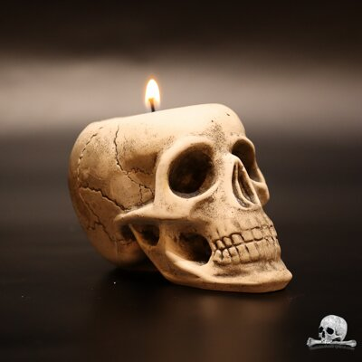 Skull Candle Stand
